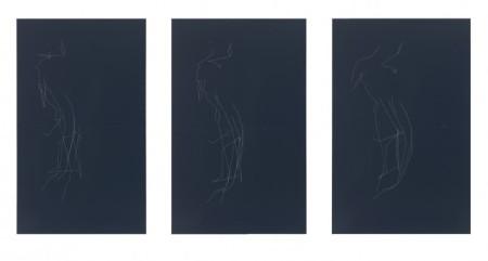 Kate Shepherd, womantorse daz3d2 Draw-On-1.s20.lrfr(rightPanel), 2014